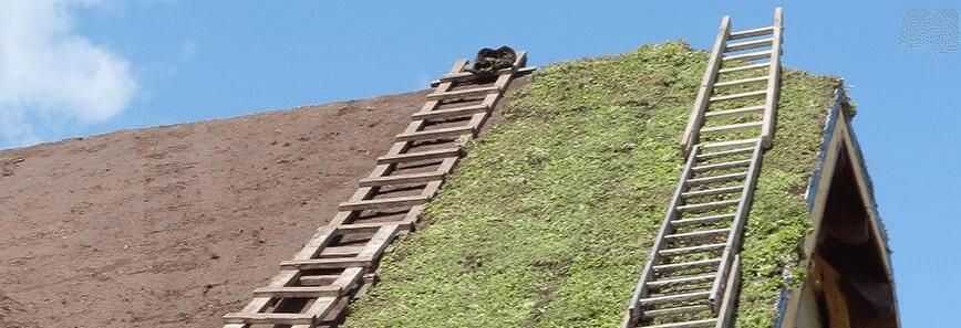 Ekonomiczne i trwałe rozwiązania dla dachów skośnych