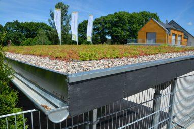 Substrat dachowy ekstensywny - przykładowe zastosowanie