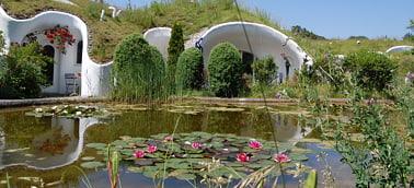 Dachy zielone - Woda na dachu